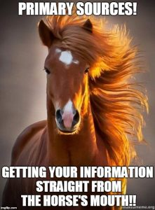 meme of a horse. text reads: primary sources. getting your information straight from the horse's mouth