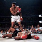 knockdowns & knockouts