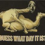 happy hump day  :)