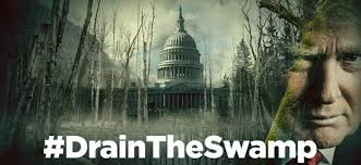 hashtag drain the swamp